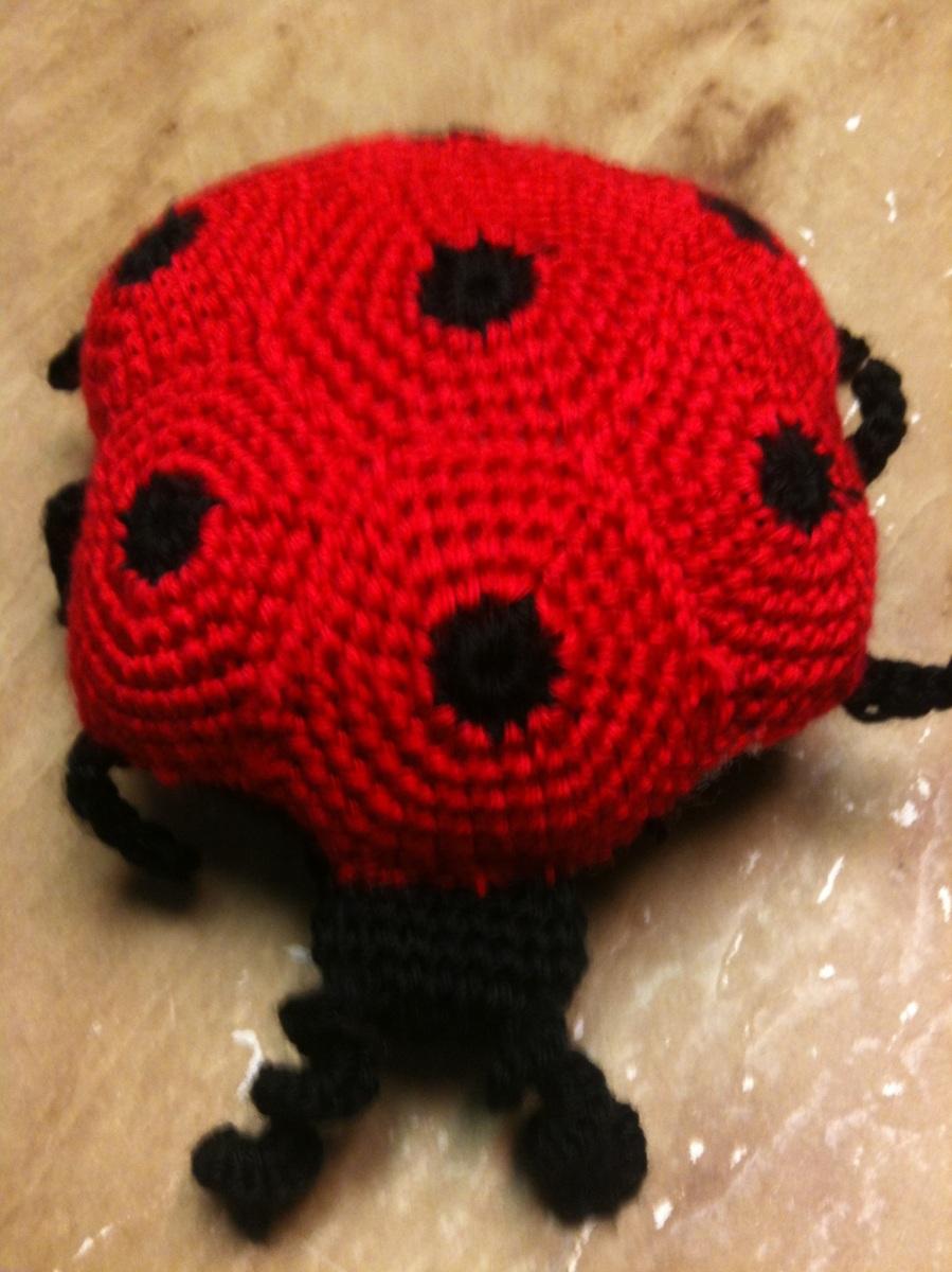 Li'l Ladybug