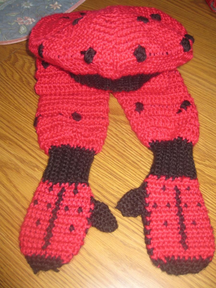 Ladybug Winter Set