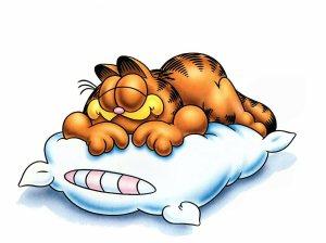 Garfield%20Sleepy
