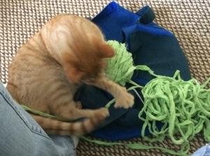 mozarts-yarn